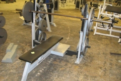 FREE WEIGHT BENCH PRESS (FITNESS)